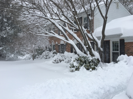 our house in the blizzard