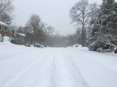 the road in our neighborhood