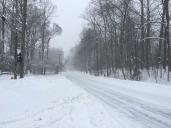 a snowy walk though the neighborhood