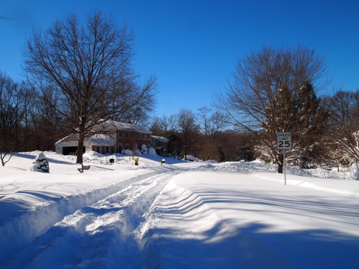 our neighborhood after the blizzard