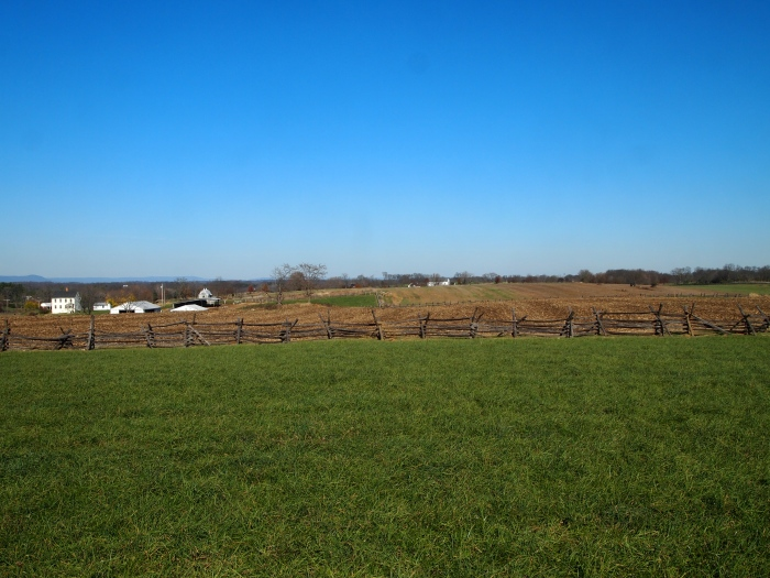 the Cornfield looking west toward the Miller farm