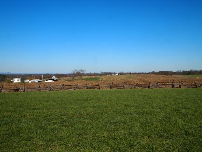 the Cornfield looking west toward the Miller farm