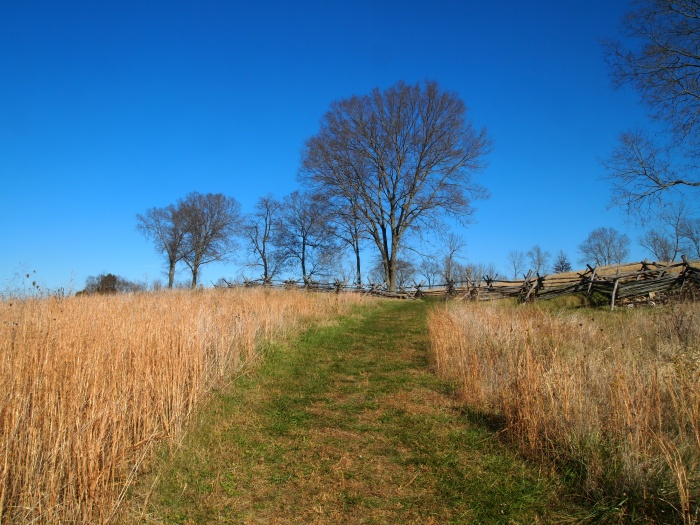 Final Attack Trail to the 40-acre cornfield