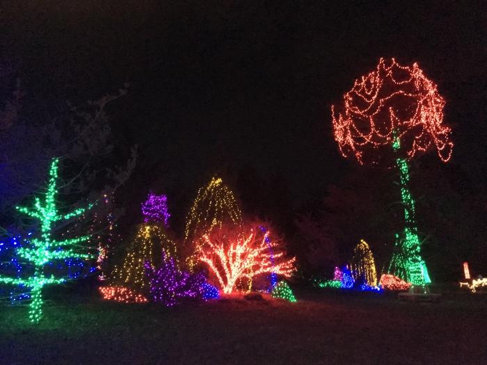 Winter Walk of Lights