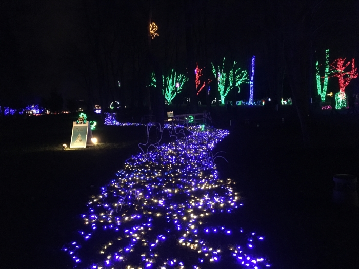 pathway of lights