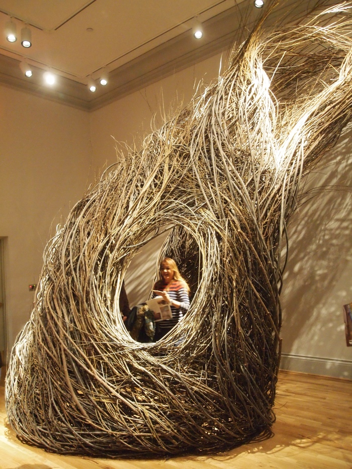 Shindig by Patrick Dougherty