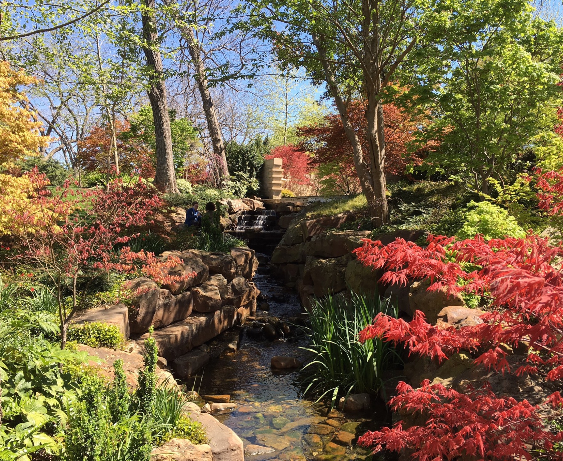 the dallas arboretum – nomad, interrupted