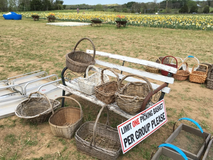 baskets for picking