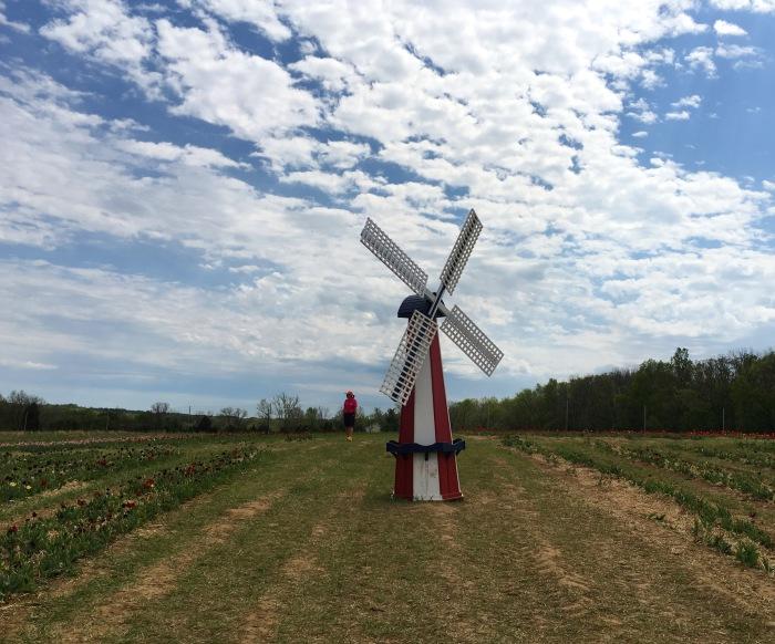 windmill mania