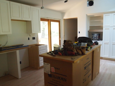 Some of the kitchen cabinets