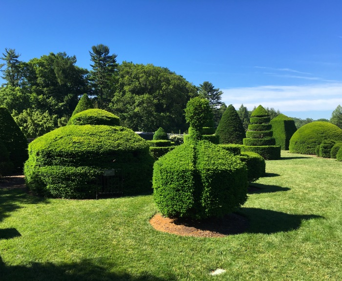 Topiary Garden (iPhone)