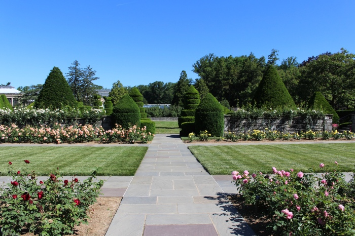 Rose Garden at Longwood