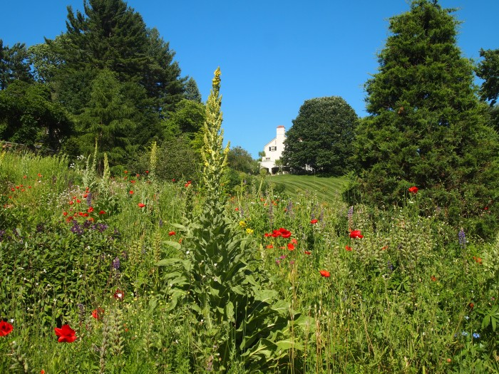 looking up from the bulb meadow to the chanticleer house