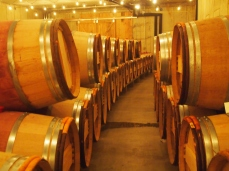 Barrels of wine at Stone Tower Winery