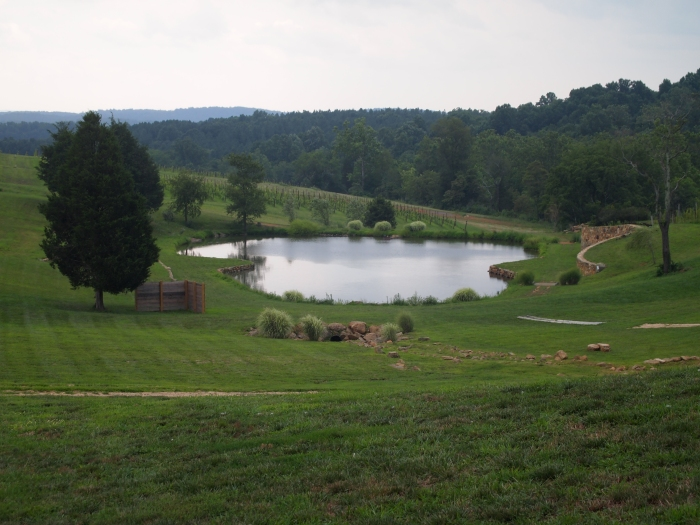 pond at Stone Tower Winery