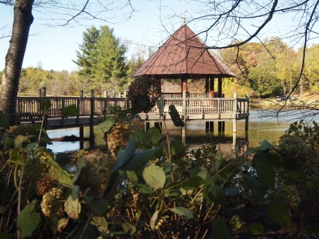 pavilion at Meadowlark