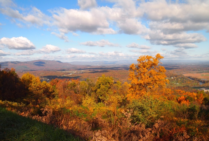 The view from Skyline Drive