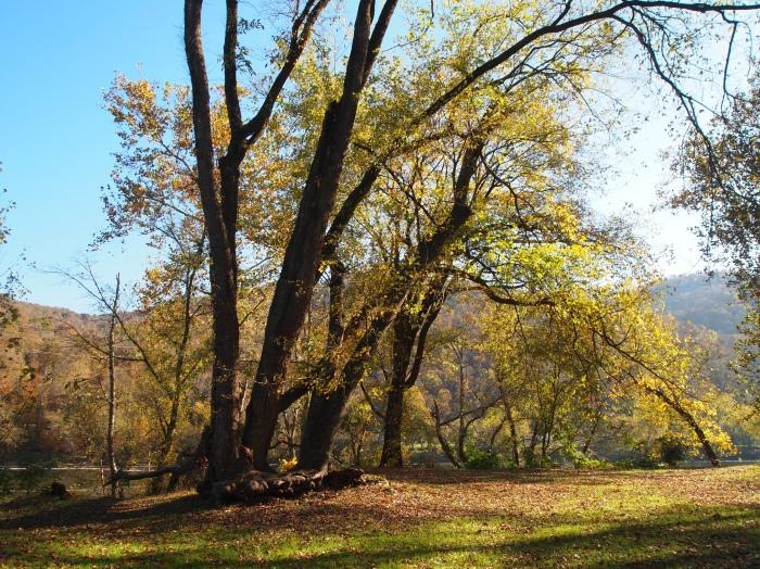 park at Kanawha Falls