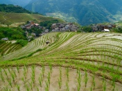 Longji Rice Terraces in Guangxi, China
