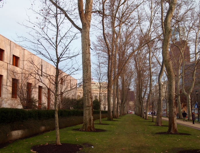 a tree-lined path near the Barnes Foundation in Philadelphia