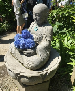 Buddha cradling hydrangeas at Meigetsu-in