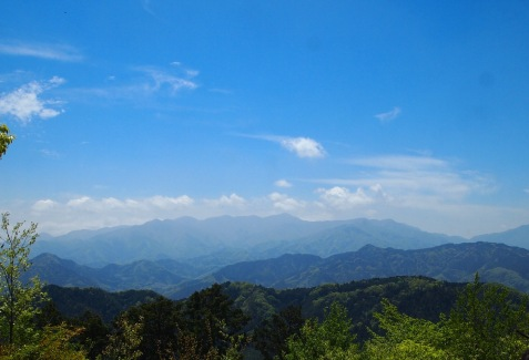 view from Mt. Takao