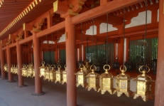lanterns at Kasugataisha