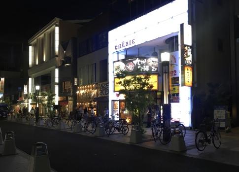 pedestrian street in Nara