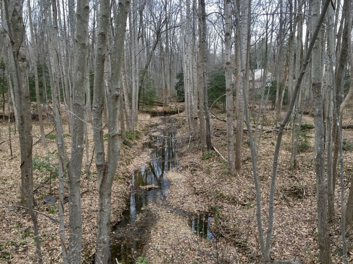 the gravel trail