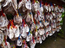 Oyster wishes at Hasedera