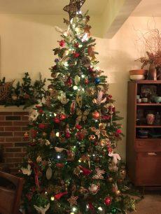 Barbara's tree