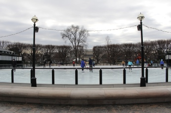 ice rink in the Sculpture Garden